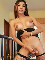 At only 19, it\'s no wonder this doe-eye sweetheart ladyboy is named Dear. Even when posing in a see through black dress and fishnet stockings, D